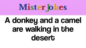 A donkey and a camel are walking in the desert