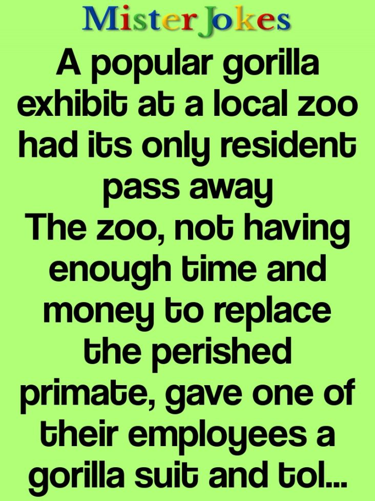 A popular gorilla exhibit at a local zoo had its only resident pass away