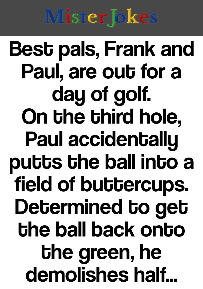 Best pals, Frank and Paul, are out for a day of golf. On the third hole, Paul accidentally putts the ball into a field of buttercups. Determined to get the ball back onto the green, he demolishes half of the flowers in the process. As he raises his club to take another swing…POOF! Mother Nature