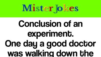 Conclusion of an experiment