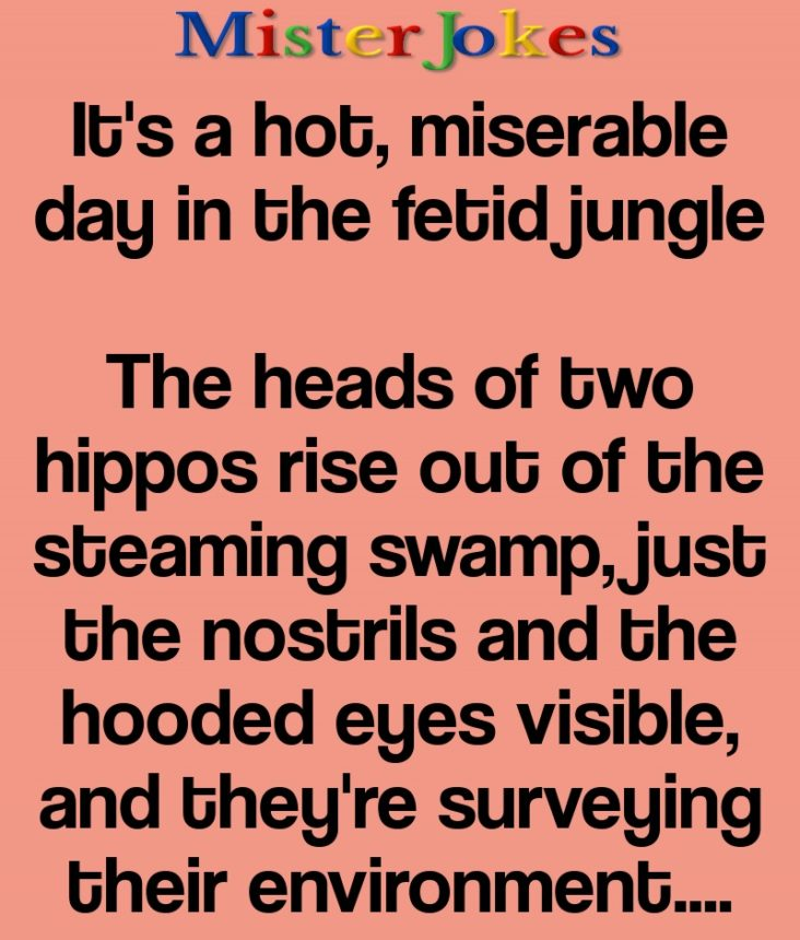 It's a hot, miserable day in the fetid jungle