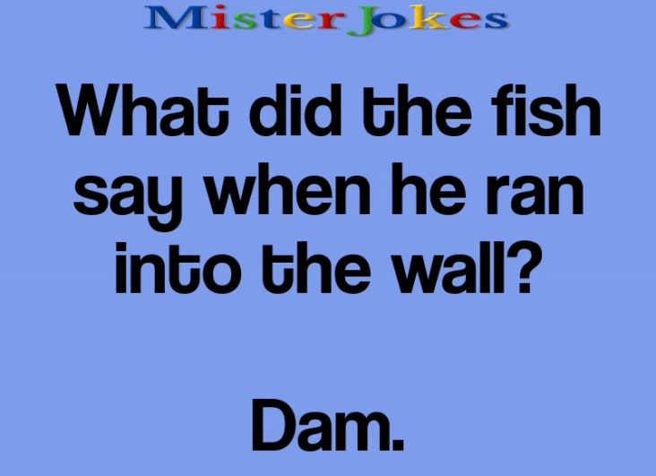 What did the fish say when he ran into the wall?