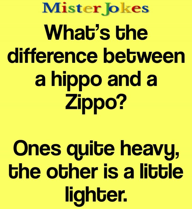 What's the difference between a hippo and a Zippo?