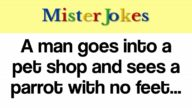 A man goes into a pet shop and sees a parrot with no feet…