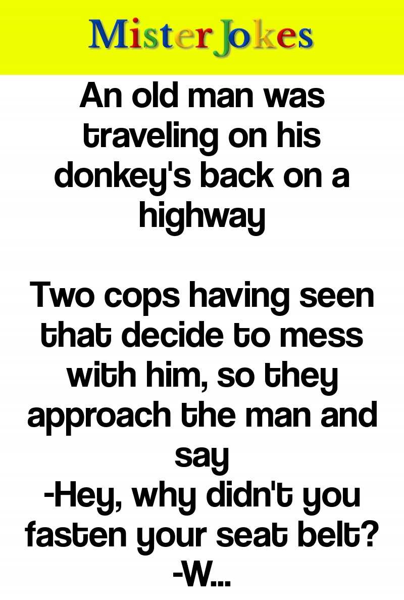 An old man was traveling on his donkey's back on a highway