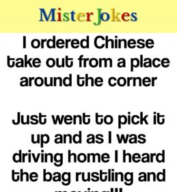 I ordered Chinese take out from a place around the corner