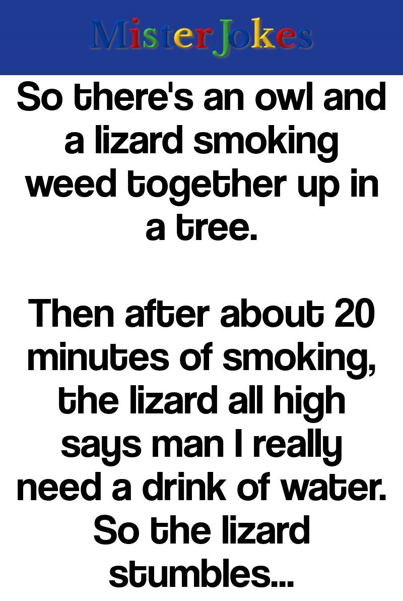 So there's an owl and a lizard smoking weed together up in a tree.