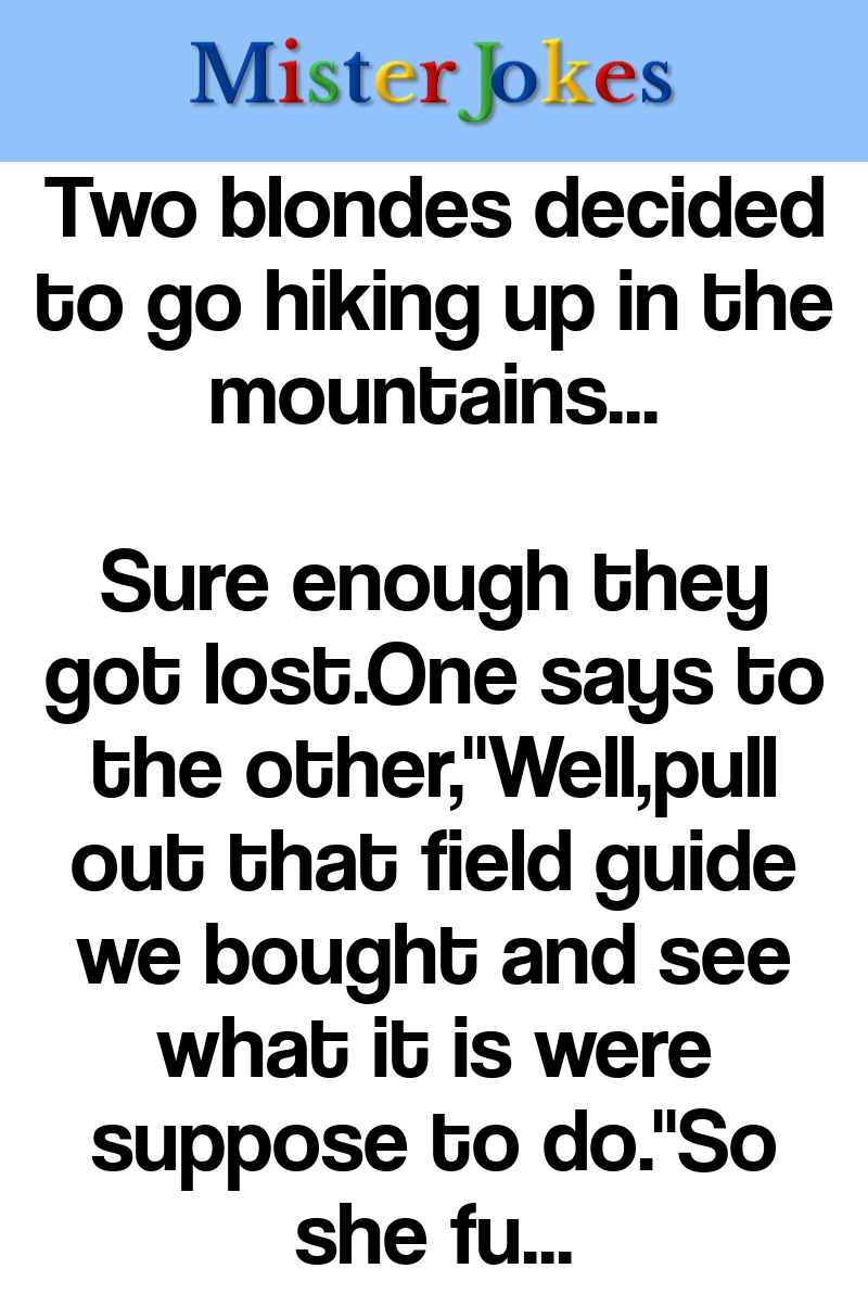 Two blondes decided to go hiking up in the mountains…