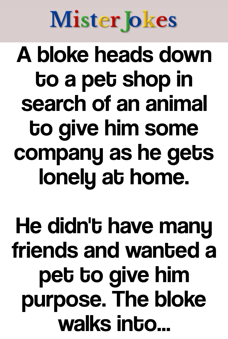 A bloke heads down to a pet shop in search of an animal to give him some company as he gets lonely at home.