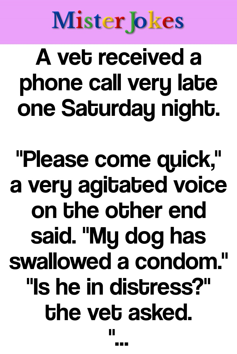 A vet received a phone call very late one Saturday night.