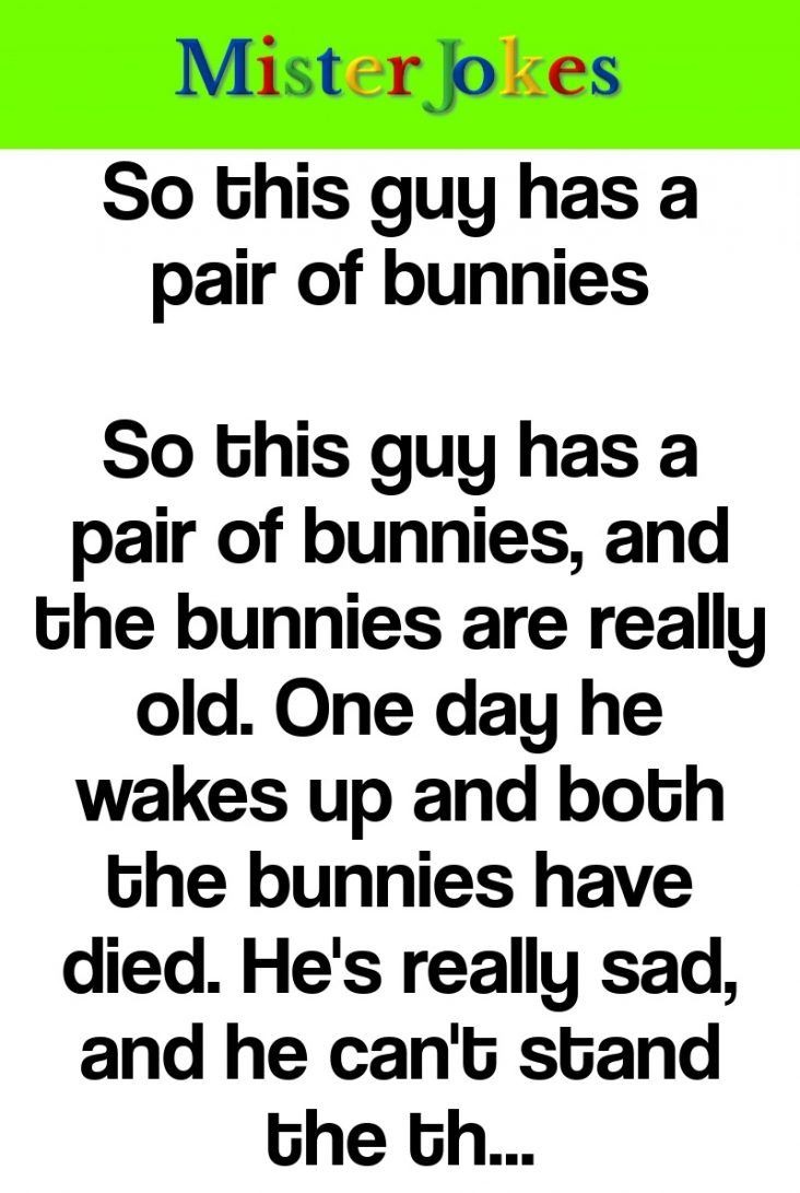 So this guy has a pair of bunnies