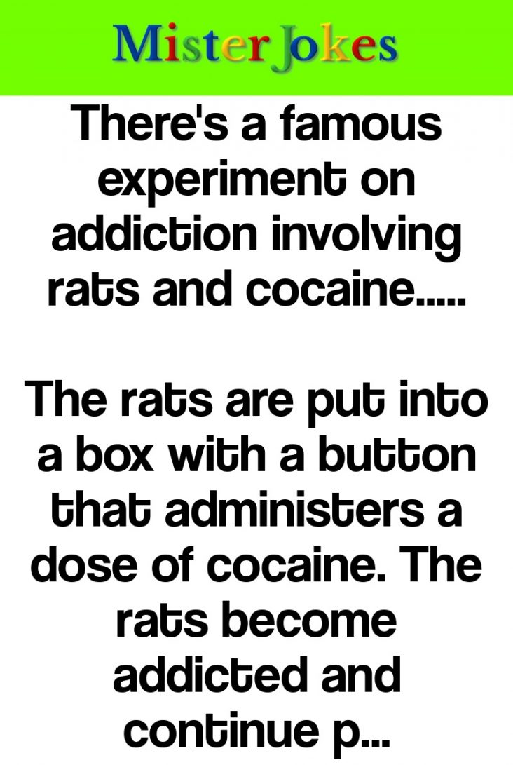 There's a famous experiment on addiction involving rats and cocaine…..