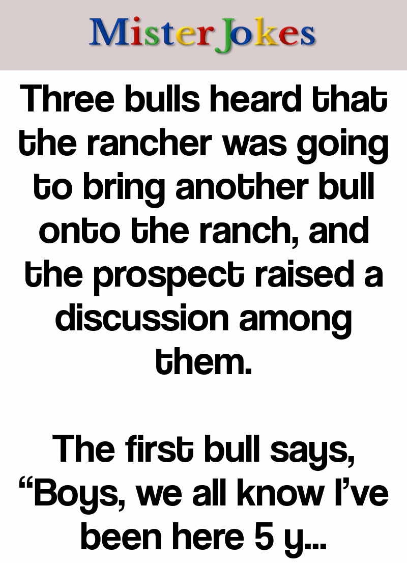Three bulls heard that the rancher was going to bring another bull onto the ranch, and the prospect raised a discussion among them.