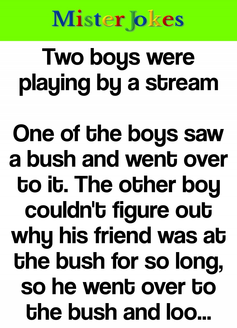 Two boys were playing by a stream